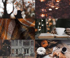 autumn, fall, and cozy image