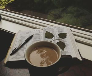 coffee, book, and nature image