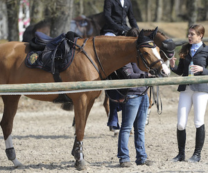 casiraghi, charlotte, and equestrian image
