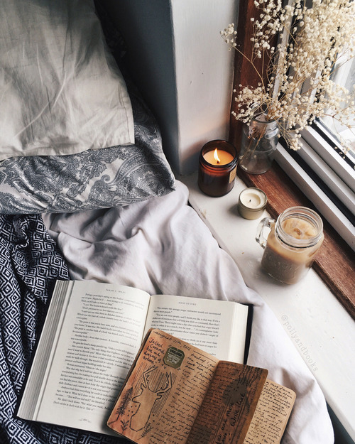 bookcase, books, and cosy image