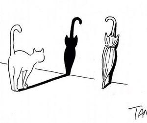 cat, umbrella, and art image