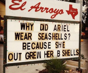 ariel, funny, and mermaid image