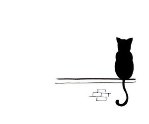 cat, black, and drawing image