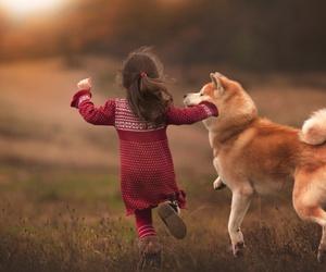 dog, autumn, and child image