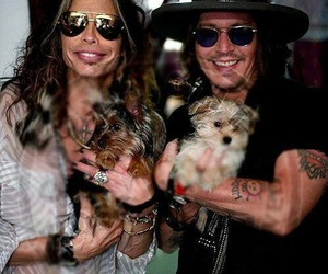 johnny depp, puppy, and steven tyler image