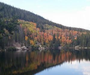 autumn, co, and colorado image