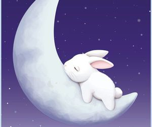 moon, bunny, and rabbit image