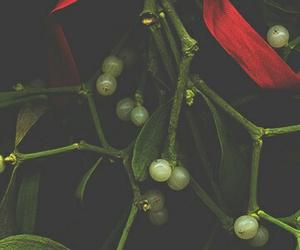 christmas, mistletoe, and lock screen image