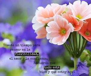 amor, frases, and confianza image