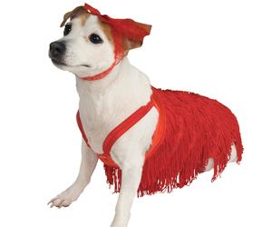 pet costume flapper large image
