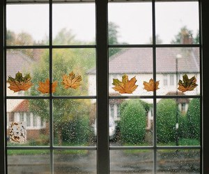 autumn, leaves, and rain image