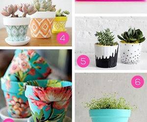 diy, plants, and cactus image