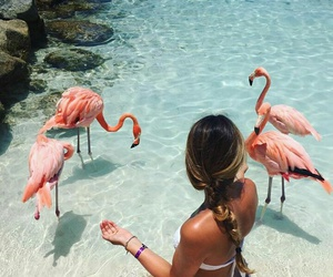 summer, girl, and flamingo image
