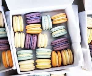 luxury and ‎macarons image