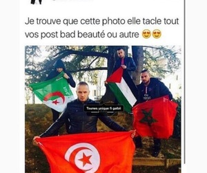 tunisia, palestine, and algerie image