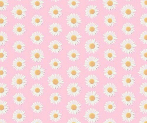 flowers, pattern, and pink image