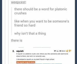 squish, tumblr, and crush image