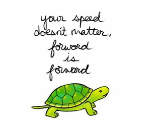 quotes, turtle, and forward image