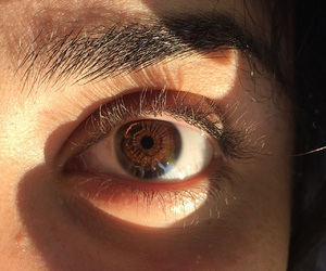 August, beautiful, and brown eyes image