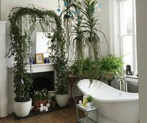 bath, bathroom, and nature image