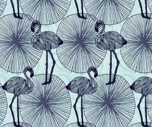 background, blue, and flamingos image
