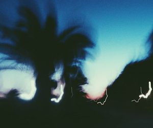 bokeh, evening, and palm tree image