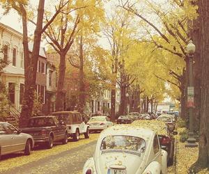 car, autumn, and tree image