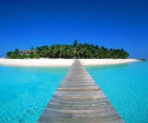 beach, Island, and summer image