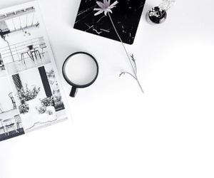 flower, minimal, and minimalism image