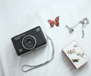 camera, butterfly, and cute image
