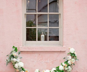 pink, flowers, and window image