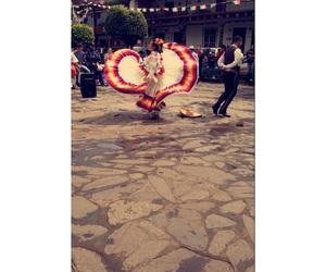 dance, mexicano, and tradicion image
