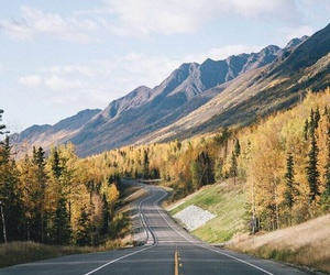 colours, road, and way image