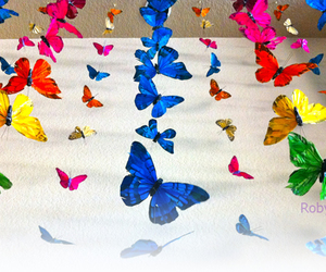 art, beautiful, and butterflies image