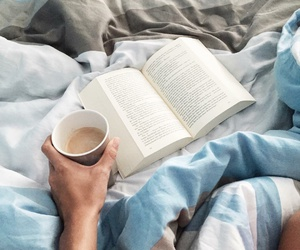 book, cosy, and wonder image