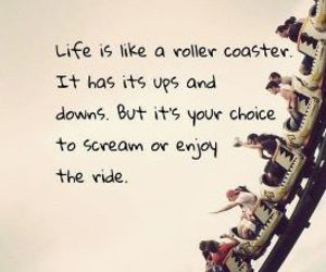 life, quotes, and Roller Coaster image