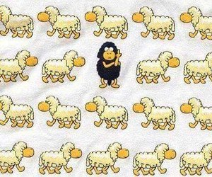 sheep, different, and black sheep image
