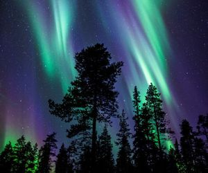 nature, sky, and aurora image