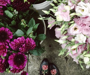 flowers, shoes, and cute image