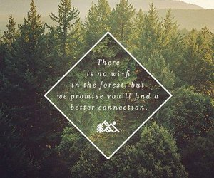 forest, nature, and quote image