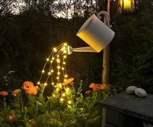 garden, lights, and flowers image