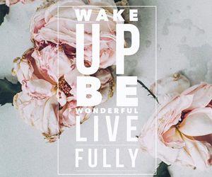 life, live, and monday image