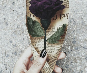 rose and vintage image