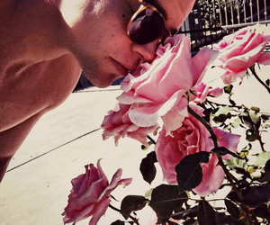 nature, roses, and river viiperi image