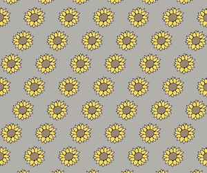 background, pattern, and sunflower image