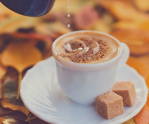 coffee, autumn, and fall image