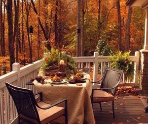 forest, orange, and autumn image