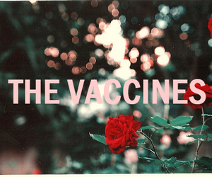 the vaccines, flowers, and vaccines image