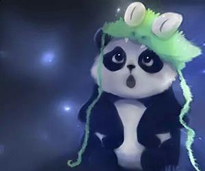 panda, cute, and black image