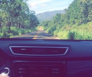arboles, carretera, and DIA image